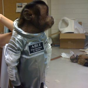 Space suit for Crystal, a Capuchin monkey / Costume Designer Marlene Stewart